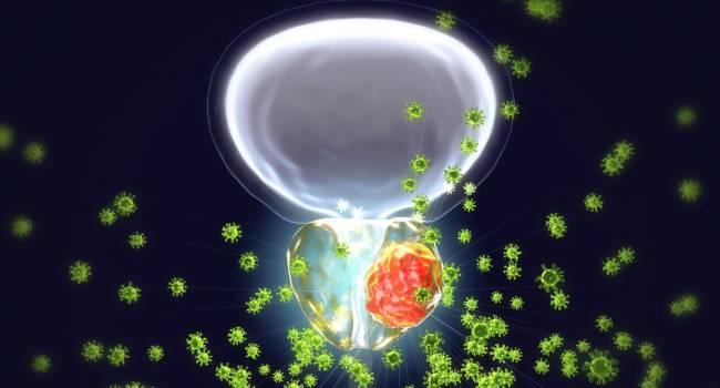 estudios clínicos para el cáncer de próstata de bajo grados
